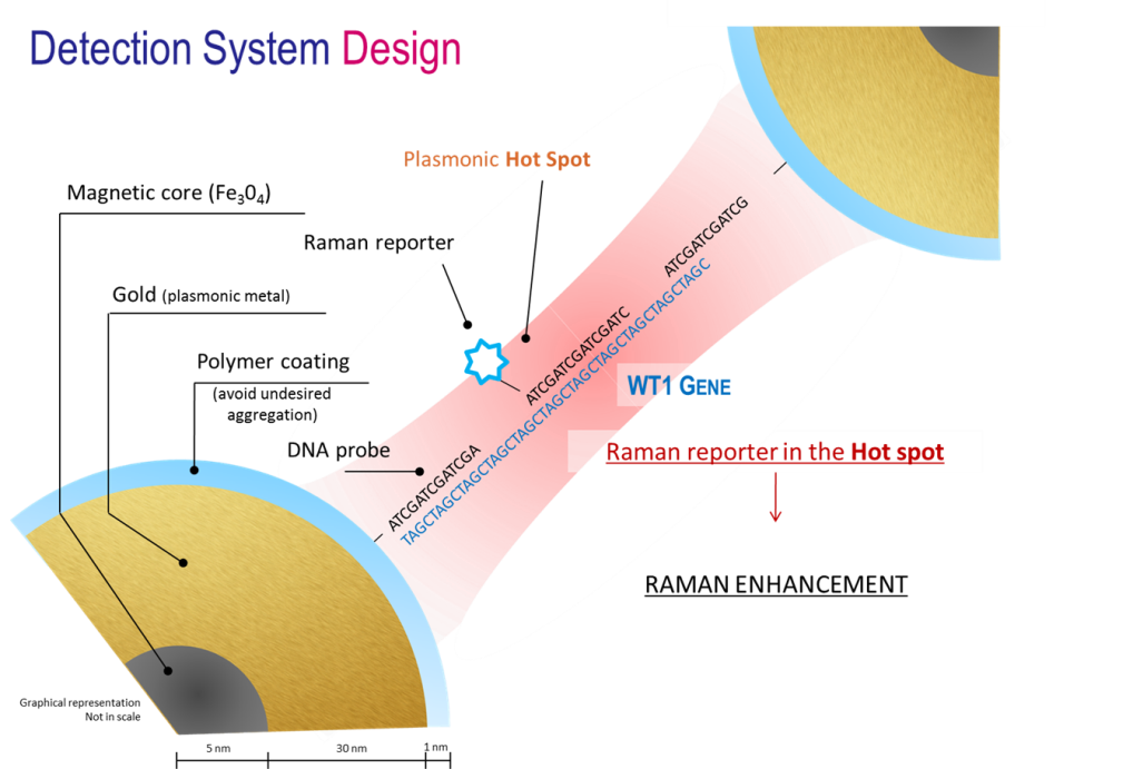 detection system design