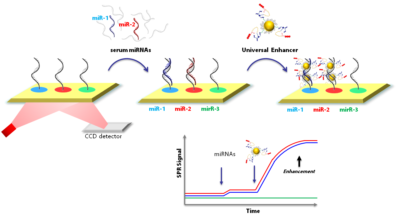 NanoPlasmiRNA_Project Scheme