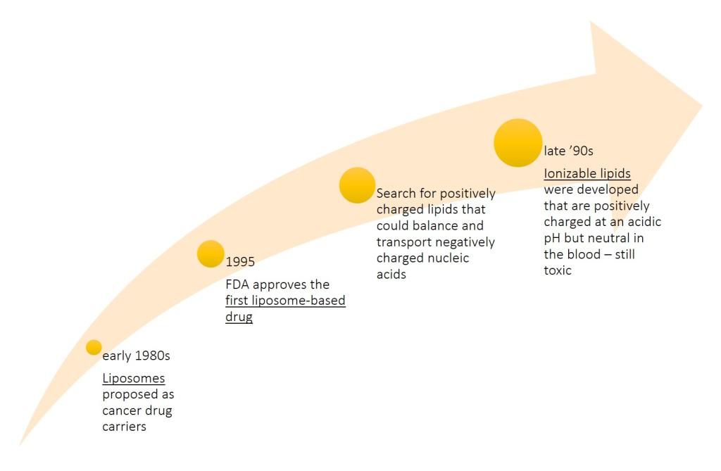 lipid shell story_1